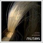 GEWA Strings Cello Bogenhaar Mustang 12 Stück 450924