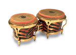 Latin Percussion Bongo Raul Rekow