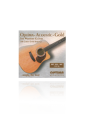 GUITARE ACOUSTIQUE/FOLK