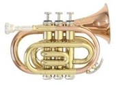 PURE GEWA BB-POCKET TRUMPET PT-101G