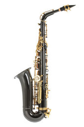 PURE GEWA EB-ALT SAXOFON ROY BENSON AS-202K