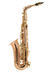 PURE GEWA EB-ALT SAXOFOON ROY BENSON AS202G